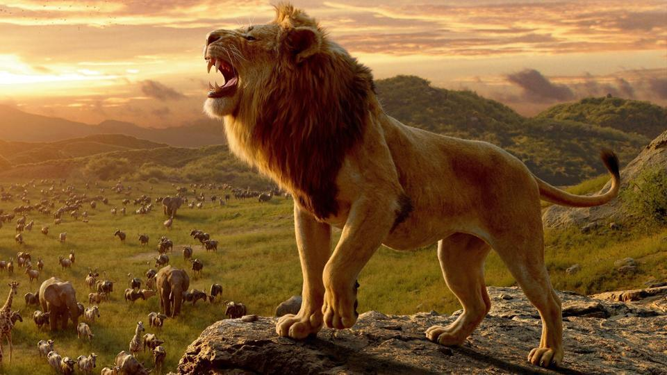 Lion King Simba.jpg